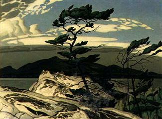 Casson - White Pine