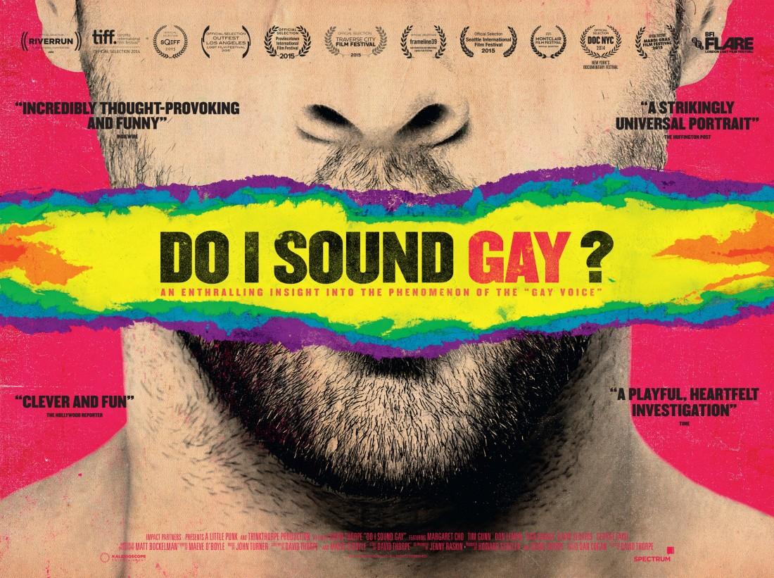 do_i_sound_gay_ver2_xxlg.jpg